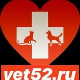 veterinarnn
