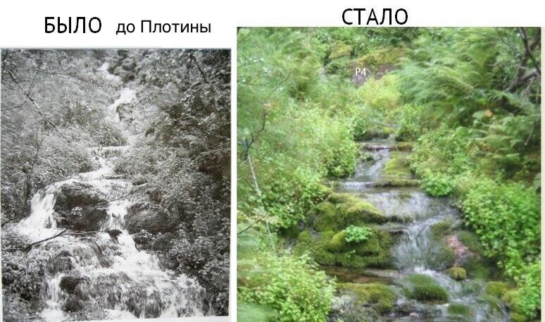 https://rataku.com/images/2021/02/02/IMG_0422.jpg