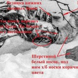 https://rataku.com/images/2021/03/10/33398388-9F6F-46C3-9ED0-8DE5B4A665EB.th.jpg