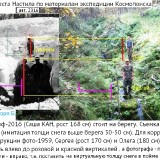 https://rataku.com/images/2021/07/25/AE46A96A-9ED9-41E5-98EB-284352B94EF0.th.jpg